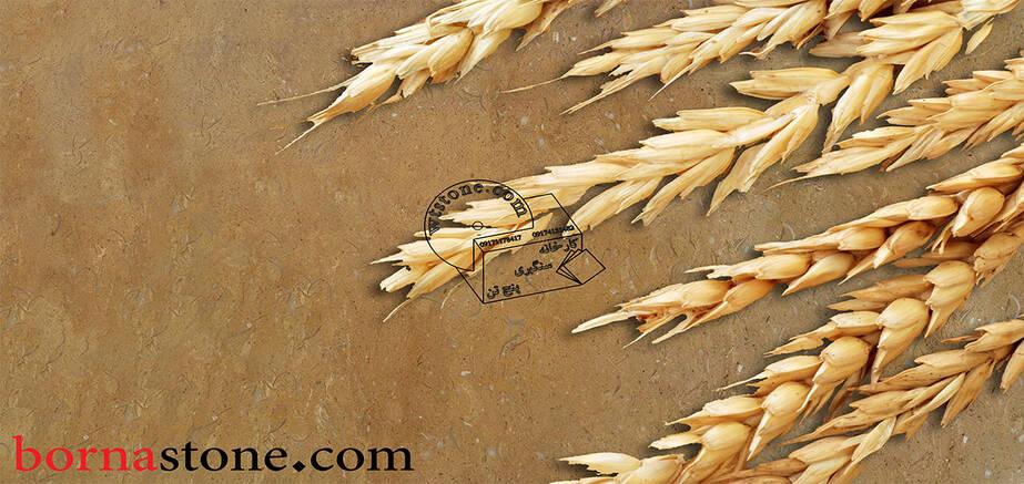 سنگ مرمریت گندمک شیراز سابیده صیقلی